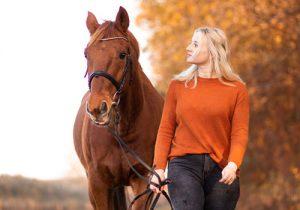 Versicherungskontor Krautsand Pferdeversicherung